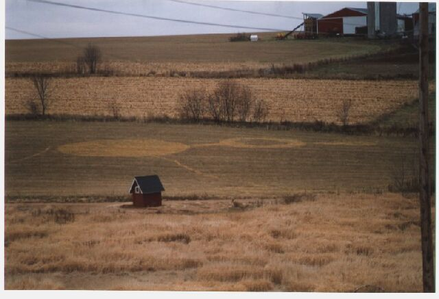 Wisconsin Crop Circle Picture and Report
