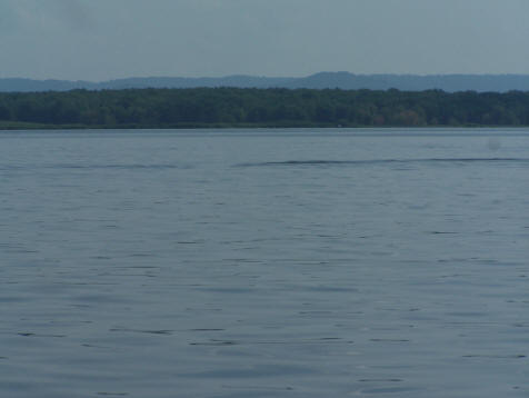 Lateral wave on cryptozoological expedition to Lake Pepin